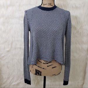 BDG blue sweater